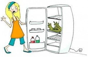 enlever l odeur de fromage ou autres aliments dans le r frig rateur cest pas b te. Black Bedroom Furniture Sets. Home Design Ideas